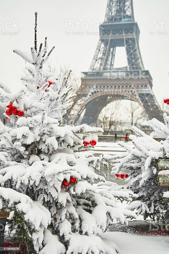 Rare snowy day in Paris stock photo