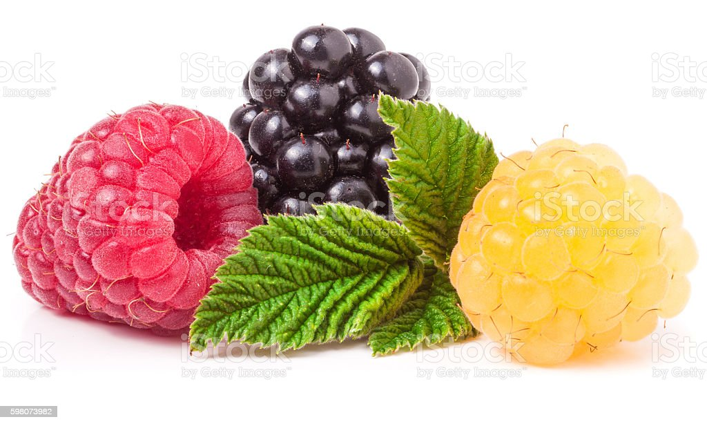 raspberries and blackberries with leaf isolated on white background stock photo