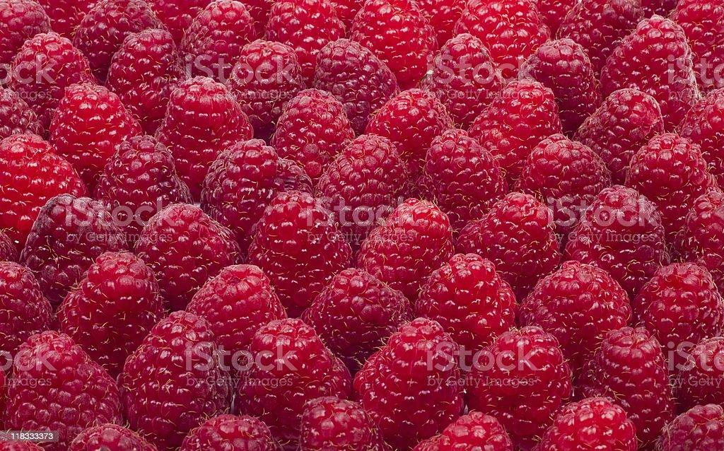 Raspberries royalty-free stock photo