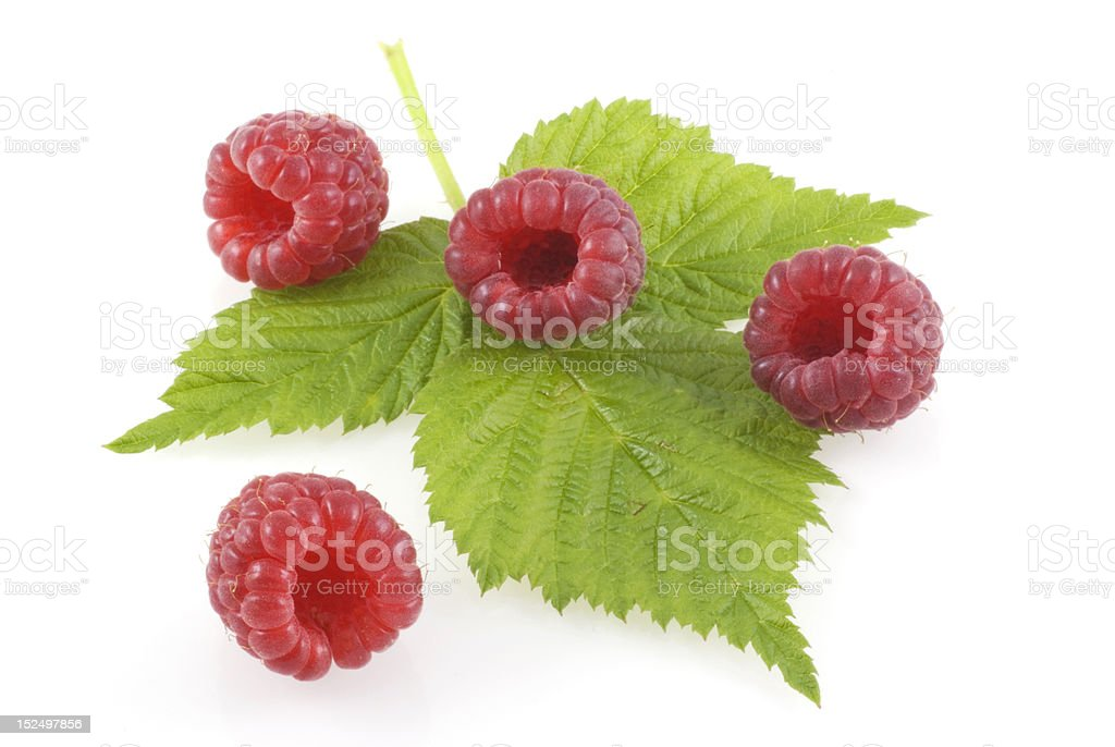Raspberries. stock photo