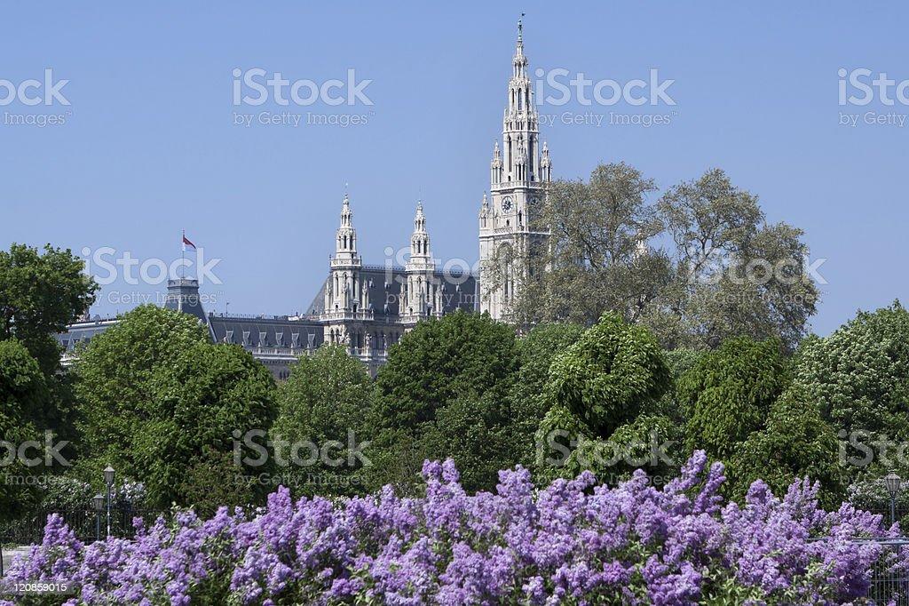Rathaus in Vienna, Austria royalty-free stock photo