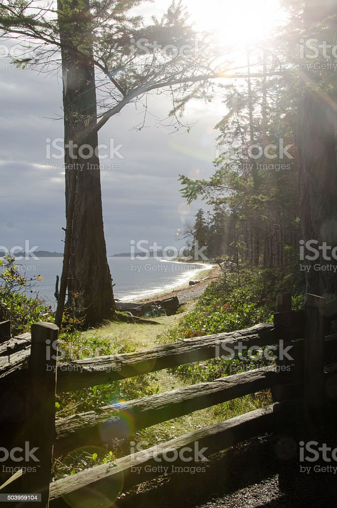 Rathtrevor Park Trail on north side with moss, lichen, beach stock photo