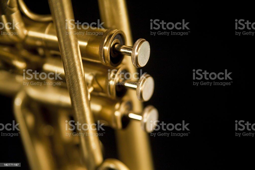 Raw Brass Trumpet royalty-free stock photo