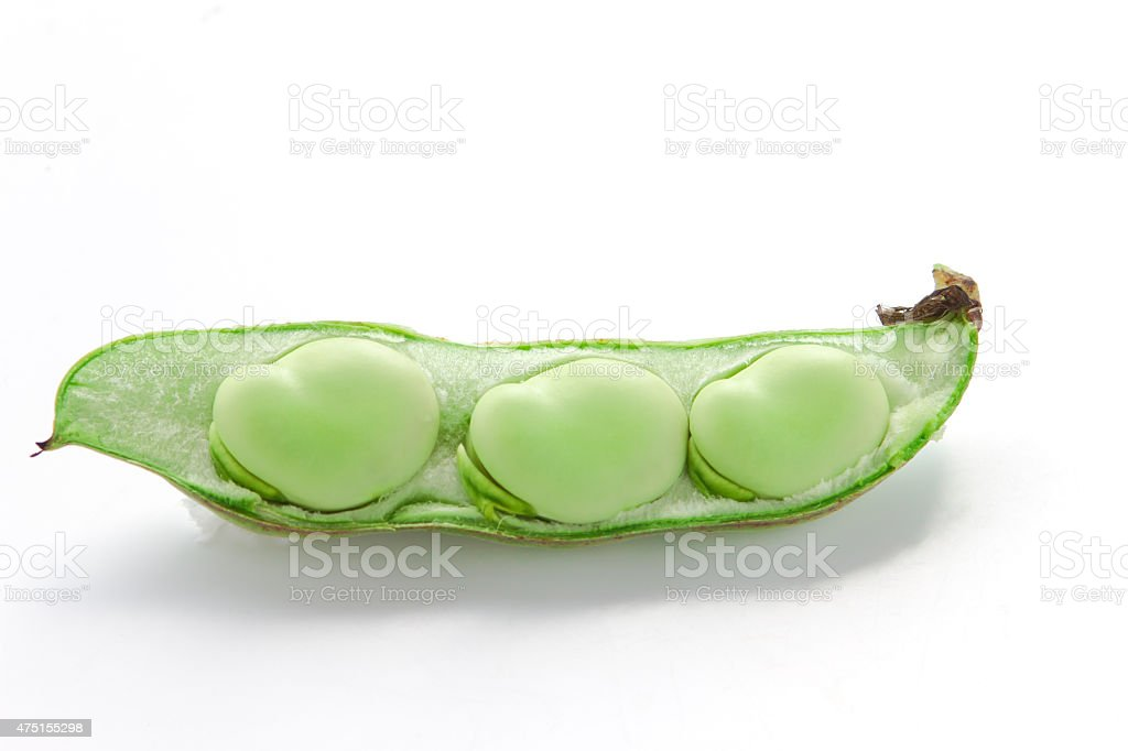 raw broad beans stock photo