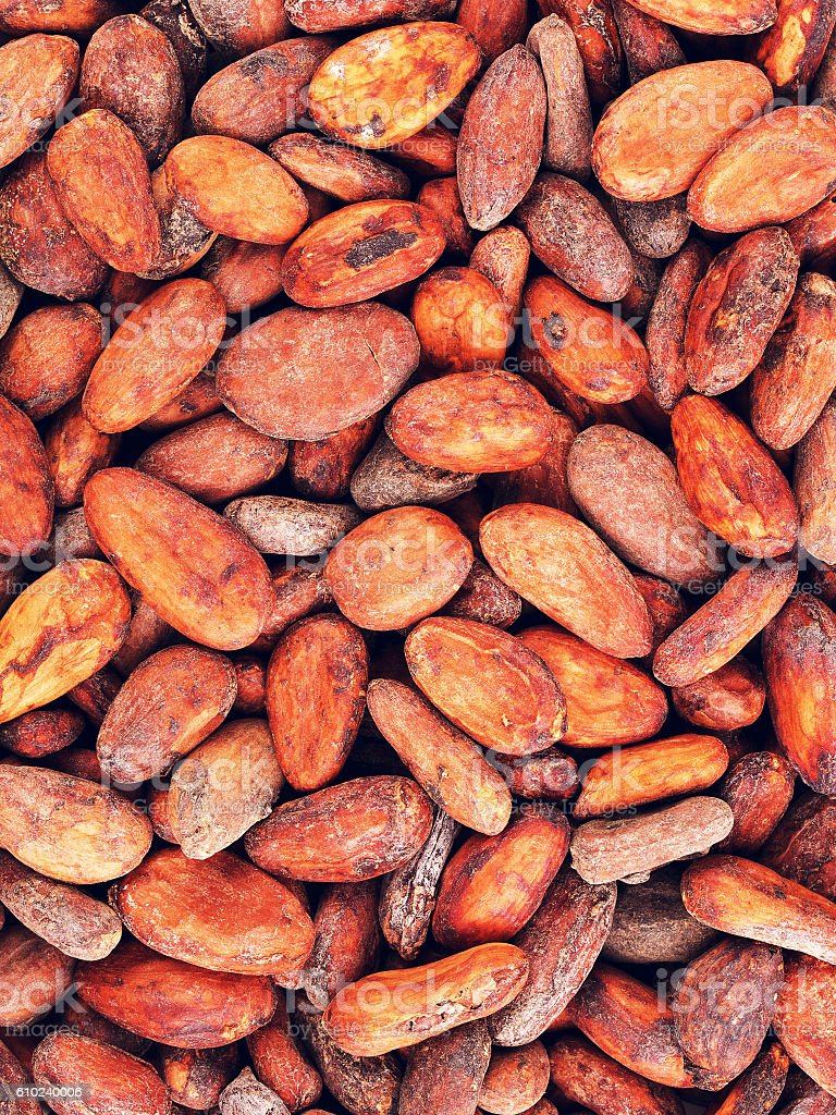 Raw Cacao Beans Background stock photo