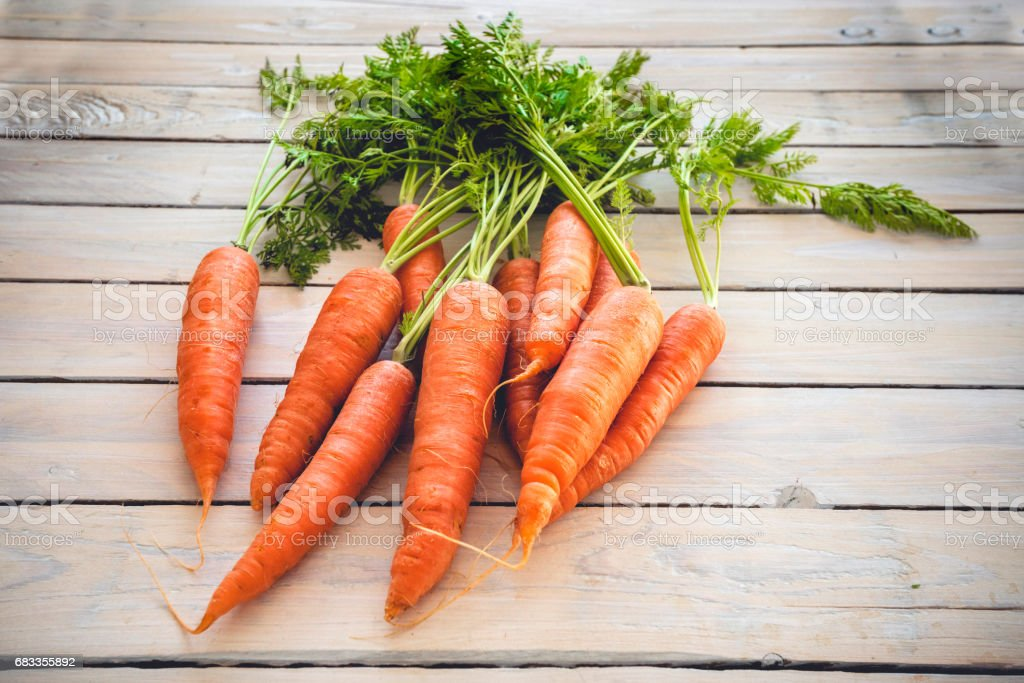 Raw carrots with green plants stock photo