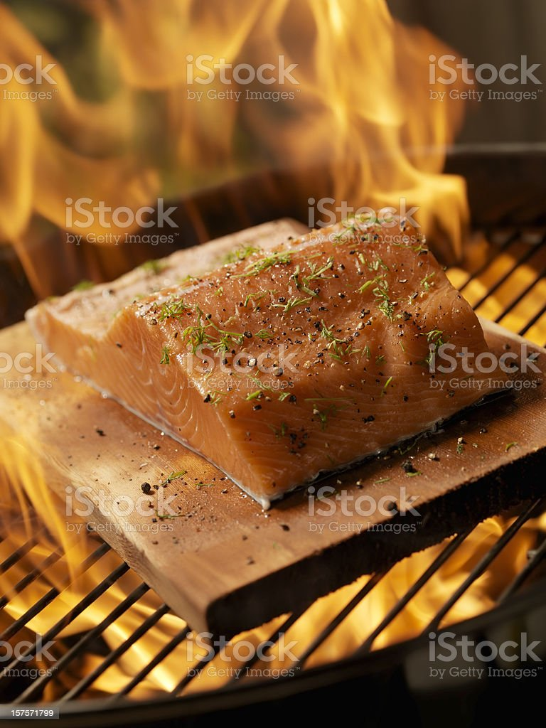 Raw Cedar Plank Salmon Fillet on an outdoor BBQ royalty-free stock photo