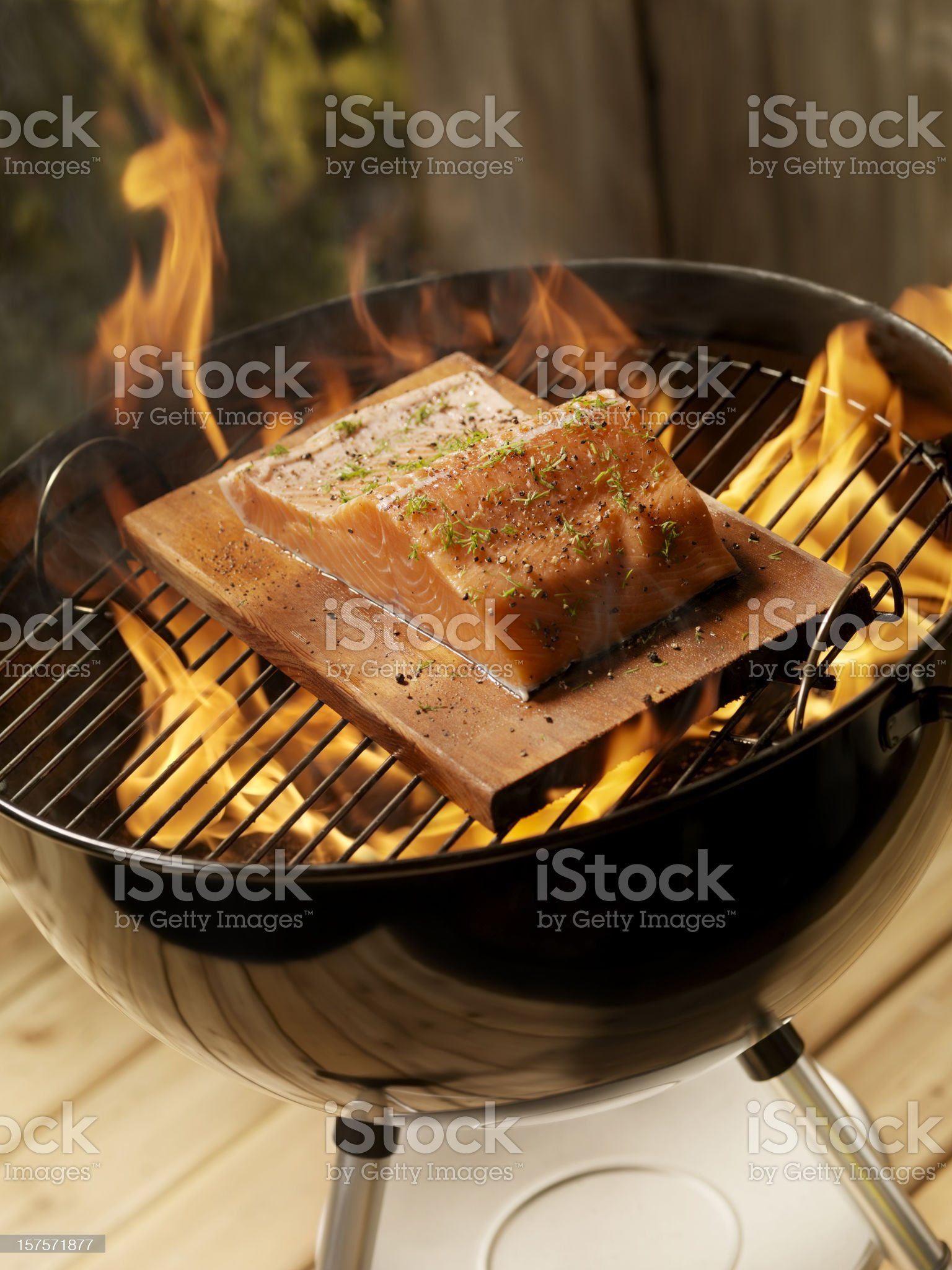 Raw Cedar Plank Salmon Fillets on an outdoor BBQ royalty-free stock photo