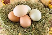 Raw chicken eggs in a nest