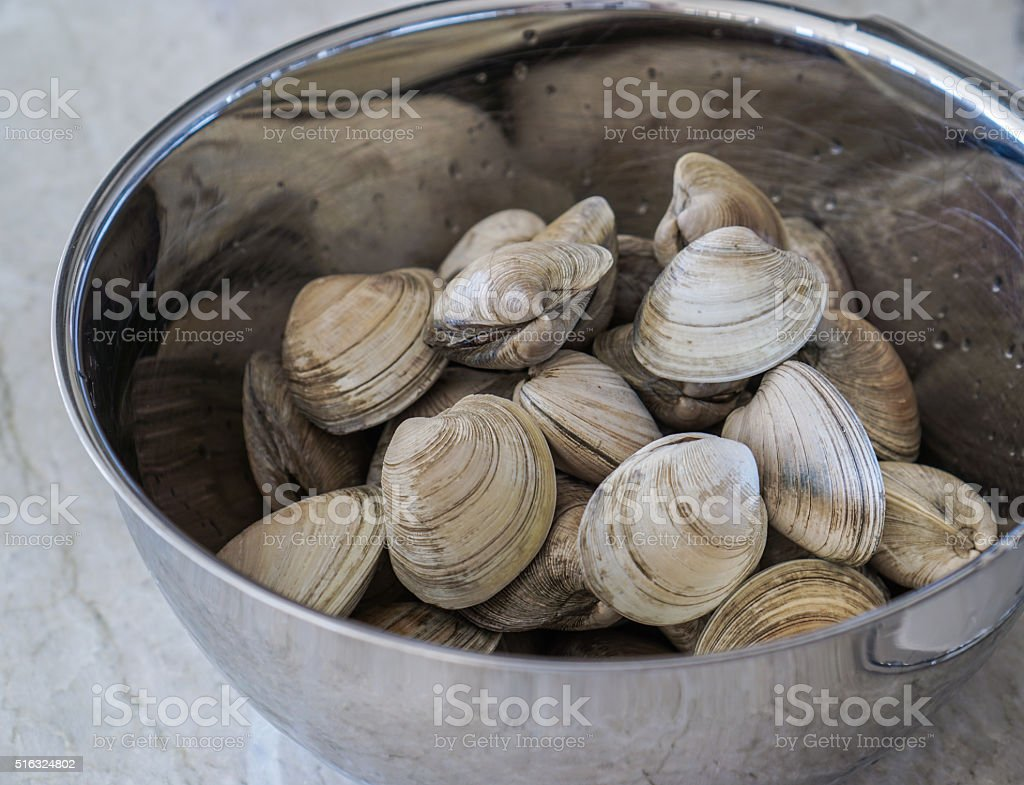 Raw Clams in a Bowl stock photo
