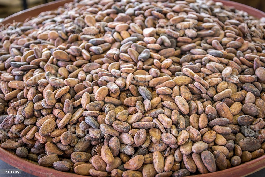 Raw Cocoa Beans Close up royalty-free stock photo