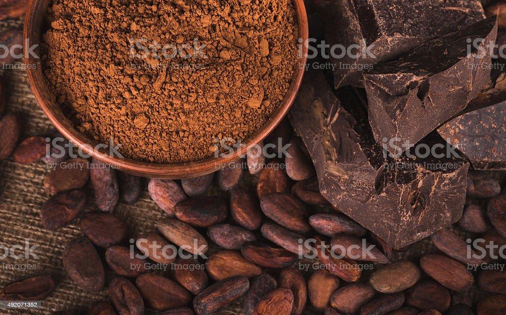 Raw cocoa beans stock photo