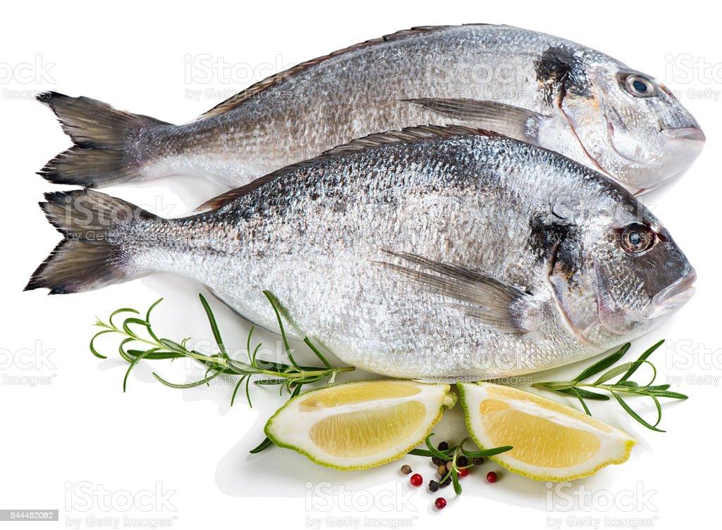 Raw dorada fishes (Sparus aurata L.) stock photo