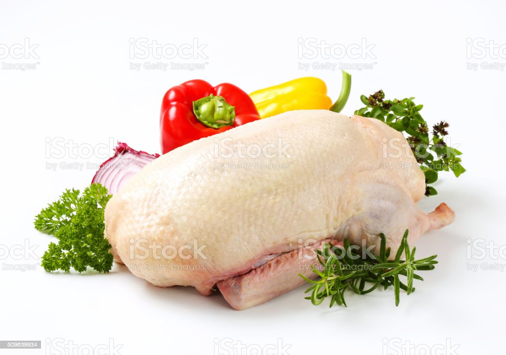 Raw duck stock photo