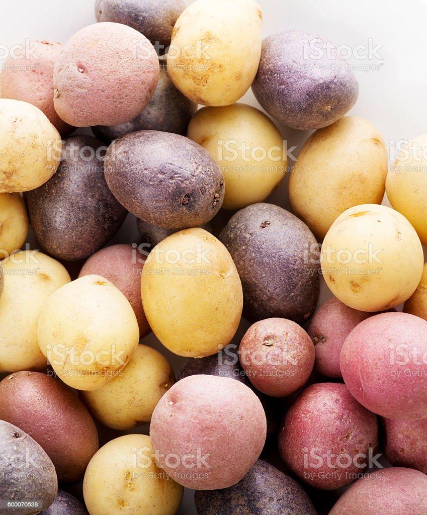 Raw Fingerling potatoes stock photo