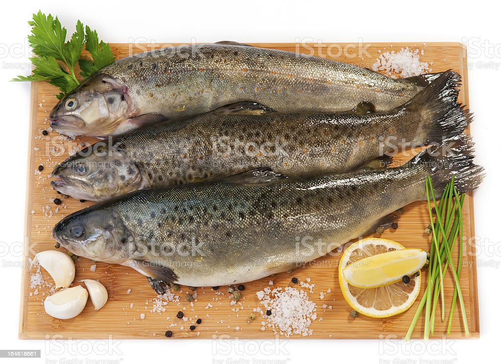Raw fish (brown trout) royalty-free stock photo