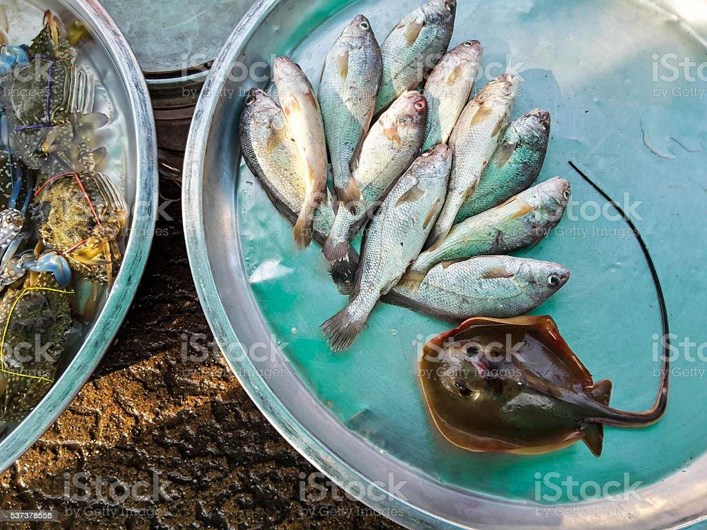 Raw fresh fish in market, seafood stock photo