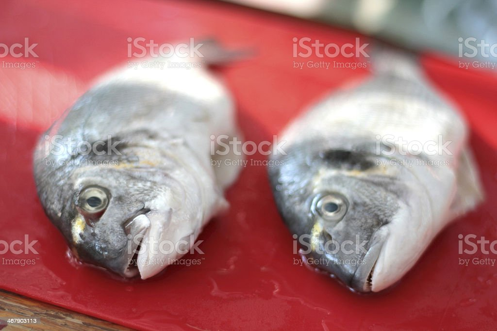 Raw gilthead seabream on a red chopping board stock photo