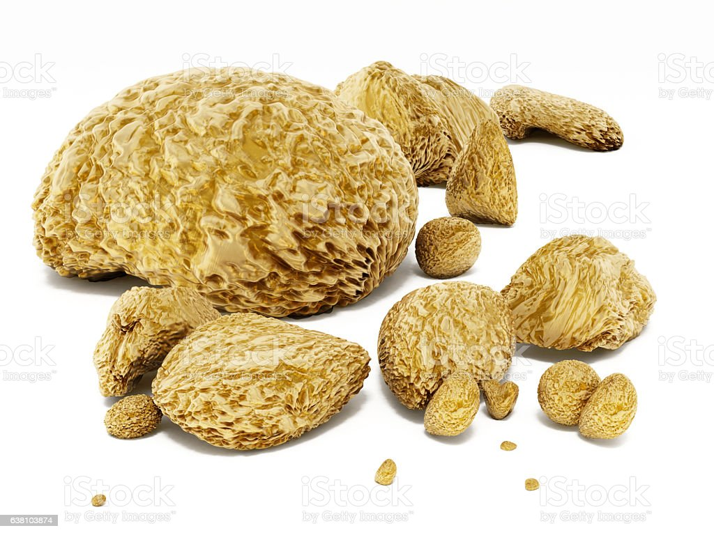 Raw gold nuggets stock photo