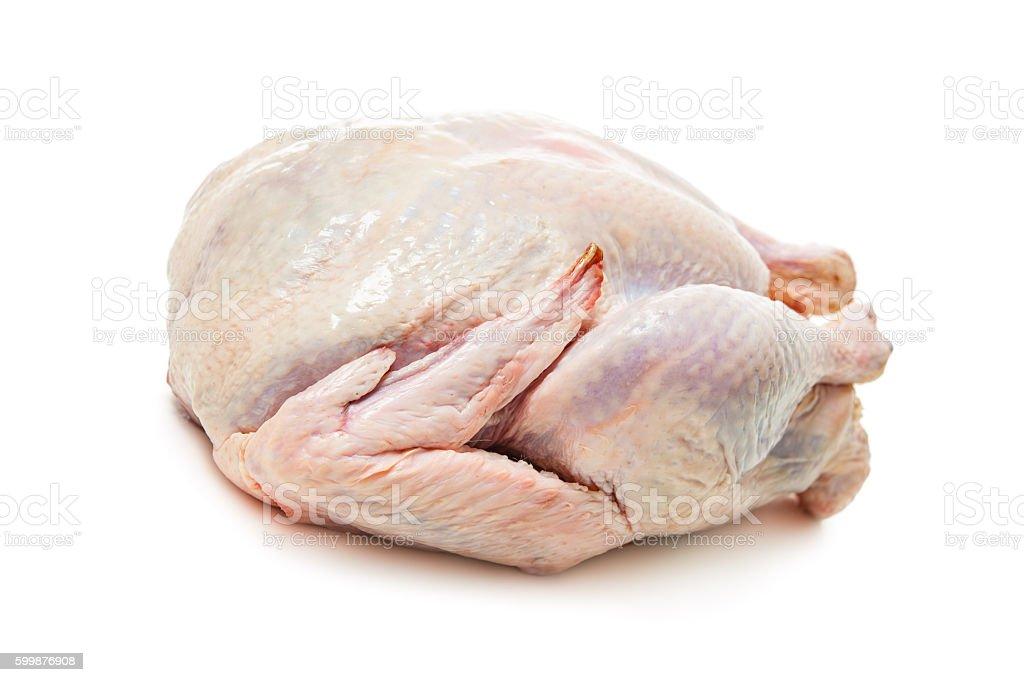 Raw goose stock photo