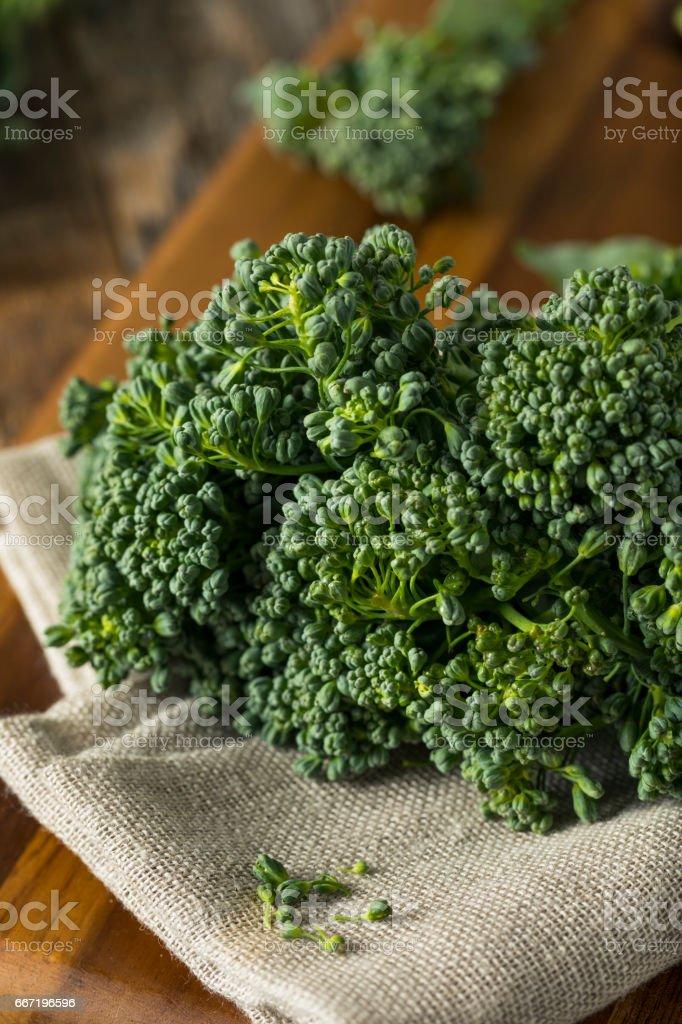 Raw Green Organic Broccolini stock photo