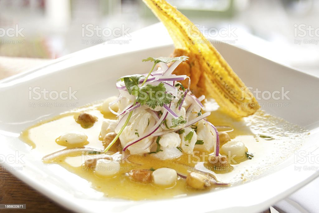 Raw halibut appetizer stock photo