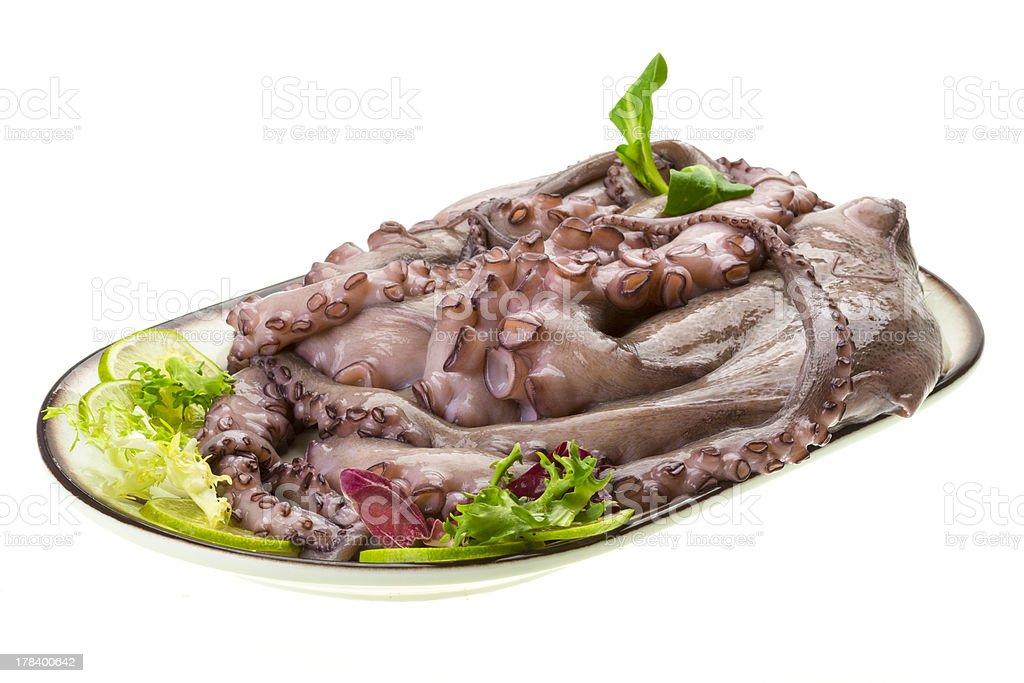 Raw large octopus royalty-free stock photo