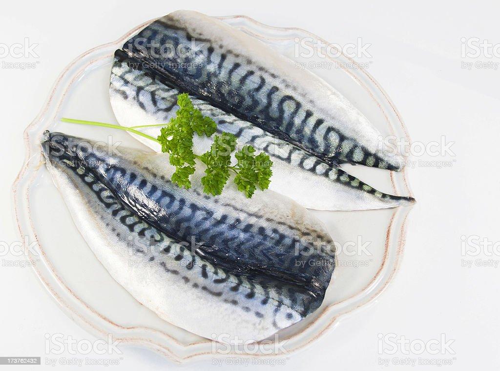 Raw Mackerel Fillets. royalty-free stock photo