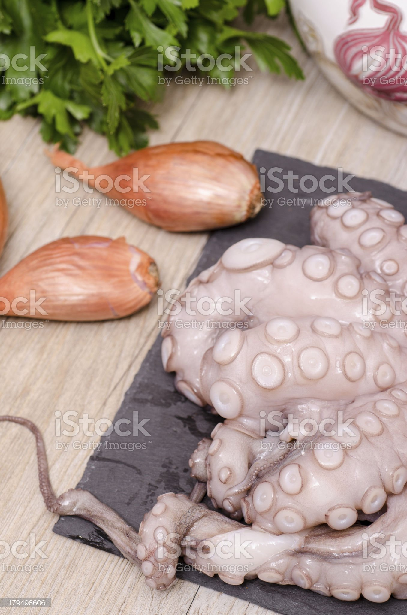 Raw octopus in vertical format royalty-free stock photo