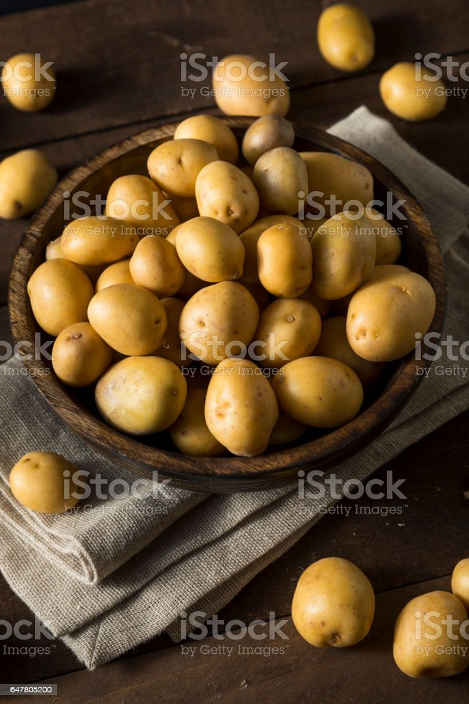Raw Organic Baby Gold Potatoes stock photo