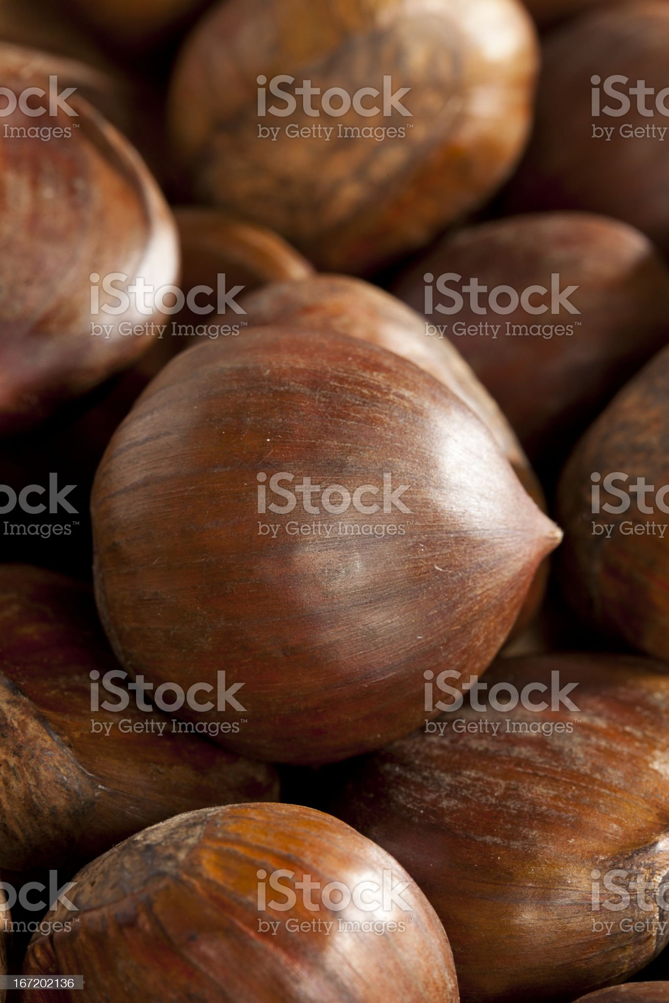 Raw Organic Brown Chestnuts royalty-free stock photo