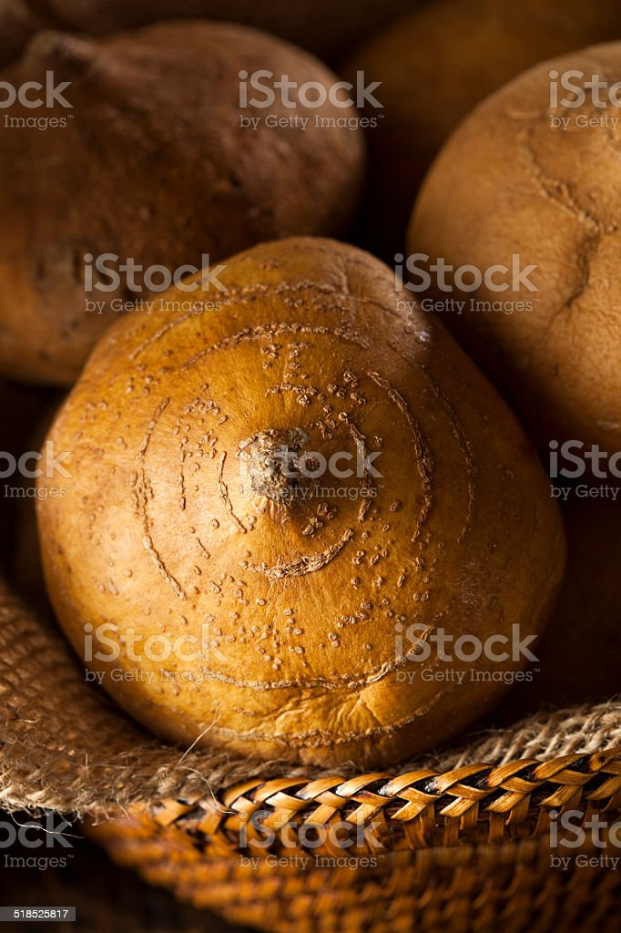 Raw Organic Brown Jicama stock photo