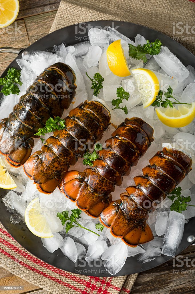 Raw Organic Fresh Lobster Tails stock photo