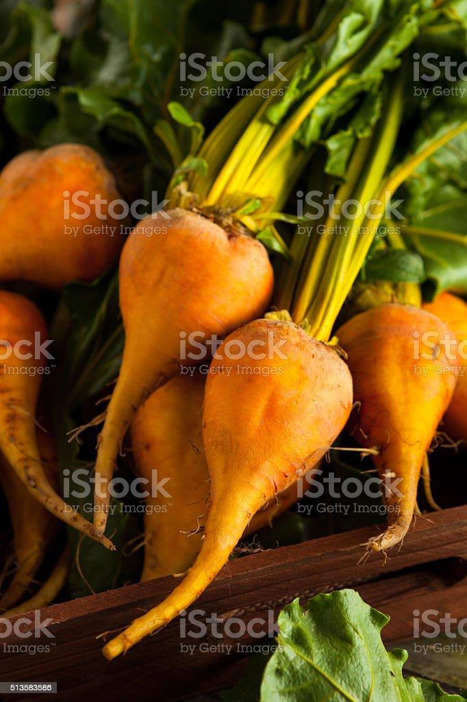 Raw Organic Golden Beets stock photo