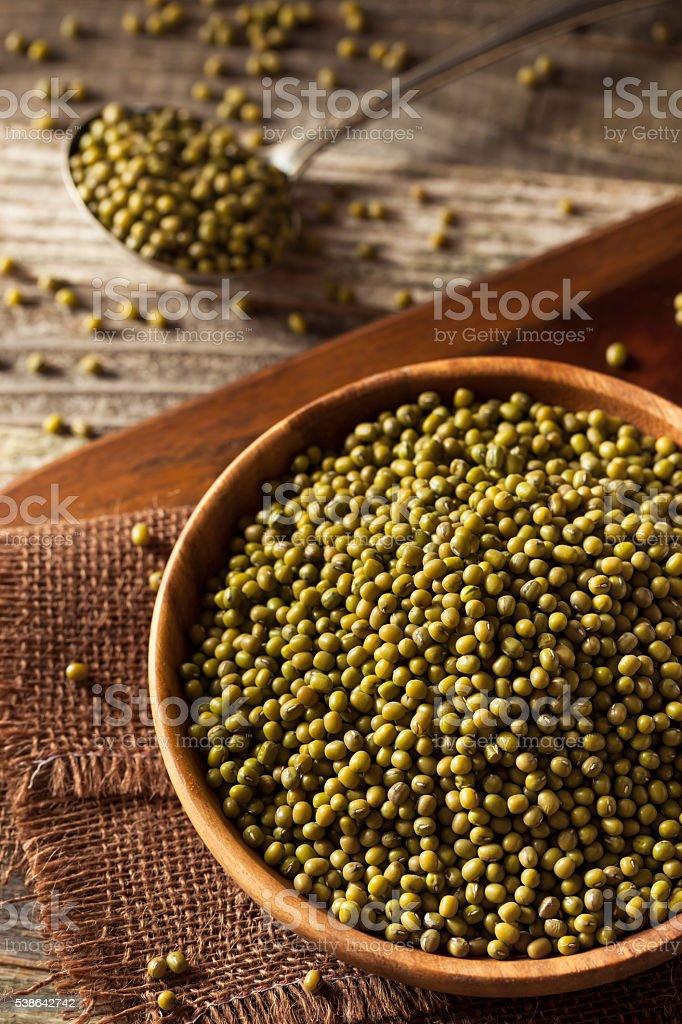 Raw Organic Green Mung Beans stock photo