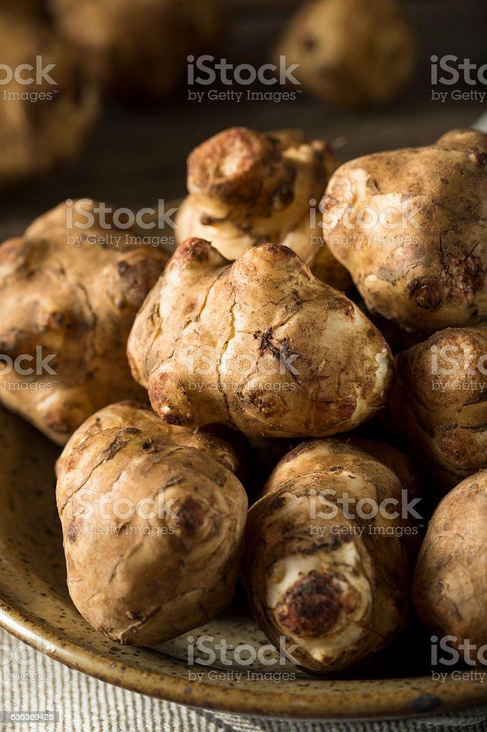 Raw Organic Jerusalem Artichoke Sunchokes stock photo
