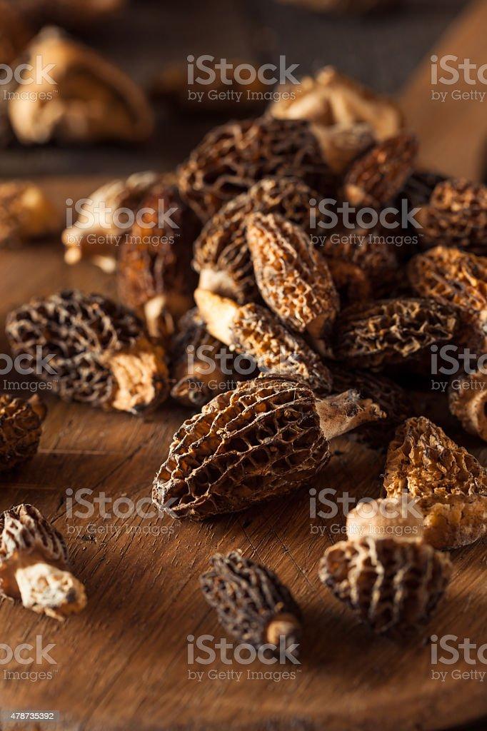 Raw Organic Morel Mushrooms stock photo