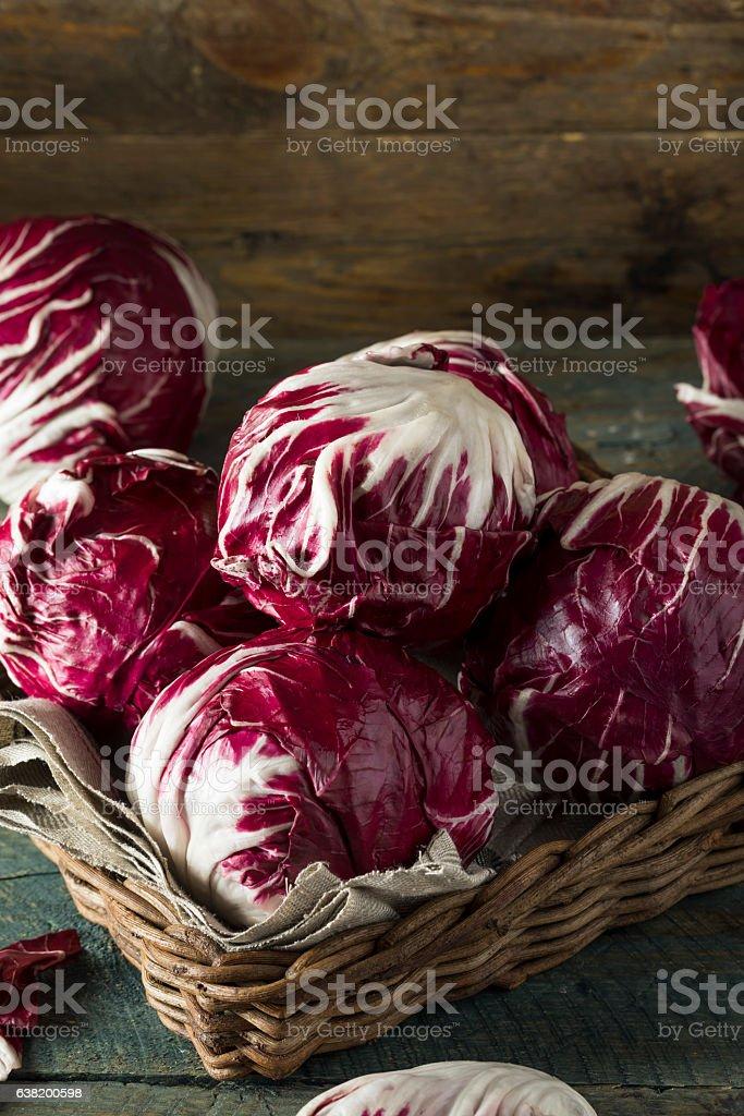 Raw Organic Purple Radicchio Lettuce stock photo