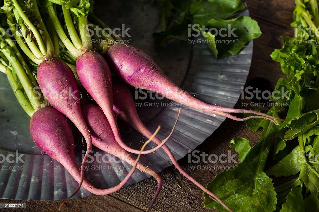 Raw Organic Purple Radishes stock photo
