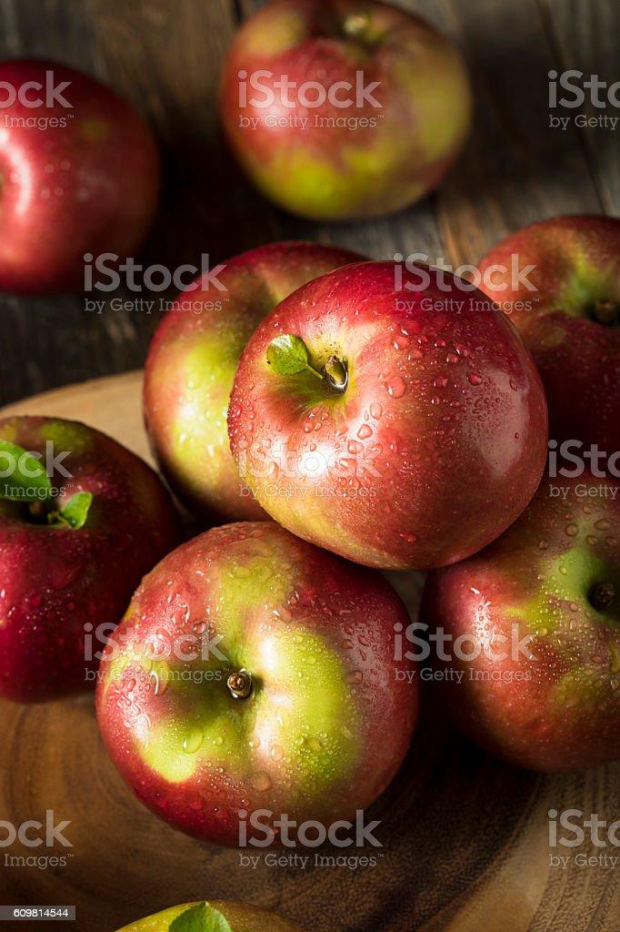 Raw Organic Red Mcintosh Apples stock photo