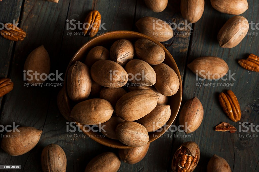 Raw Organic Whole Pecans stock photo