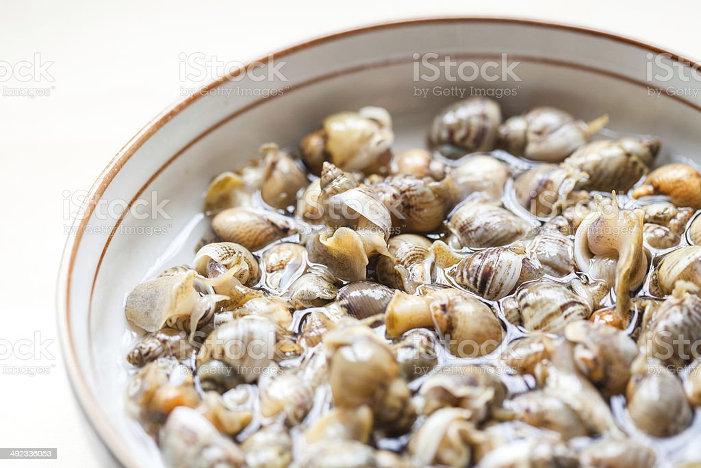Raw Periwinkle royalty-free stock photo