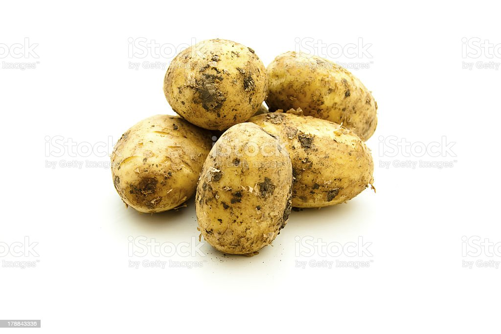 Raw potatoes uncleaned stock photo