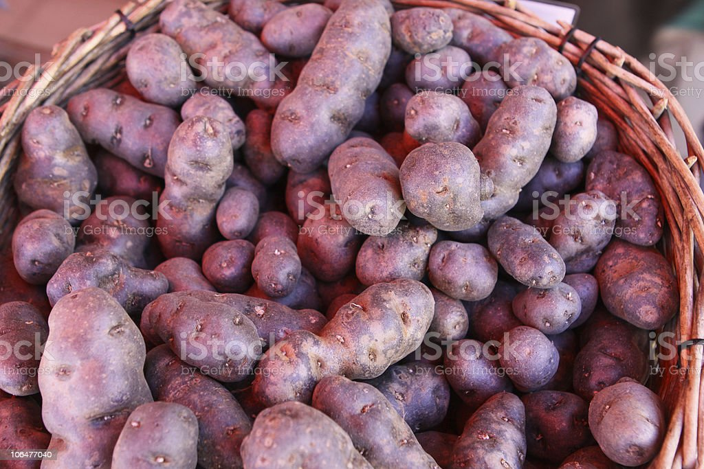 Raw Potatoes - Vitelotte stock photo