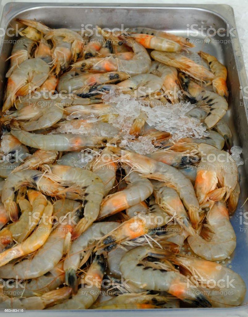 Raw prawns dispalyed at Limassol fish market stock photo