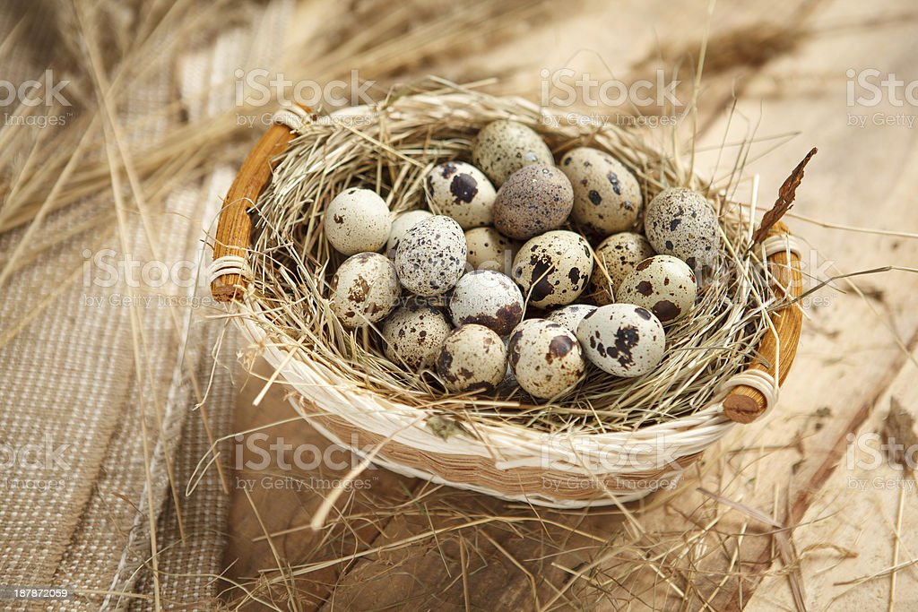 Raw quail eggs royalty-free stock photo