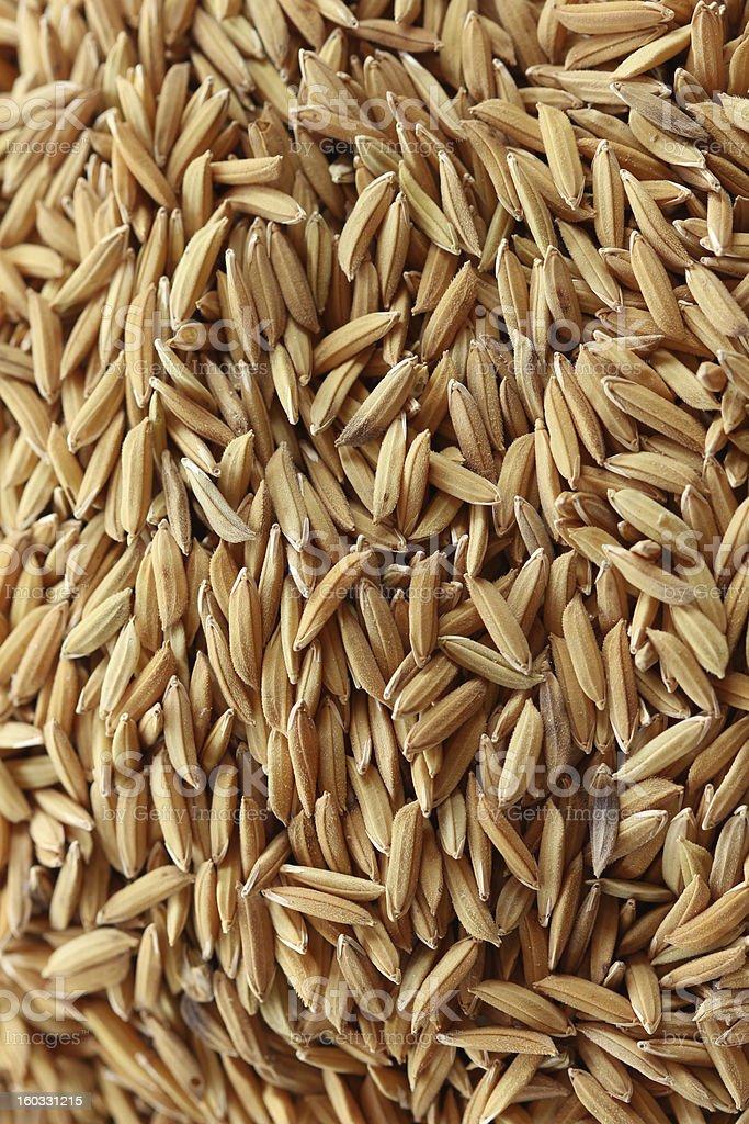 Raw Rice Background royalty-free stock photo