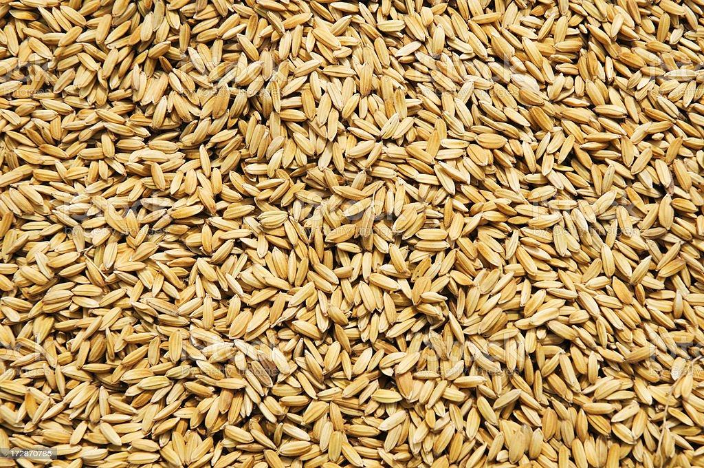 Raw Rice Background stock photo