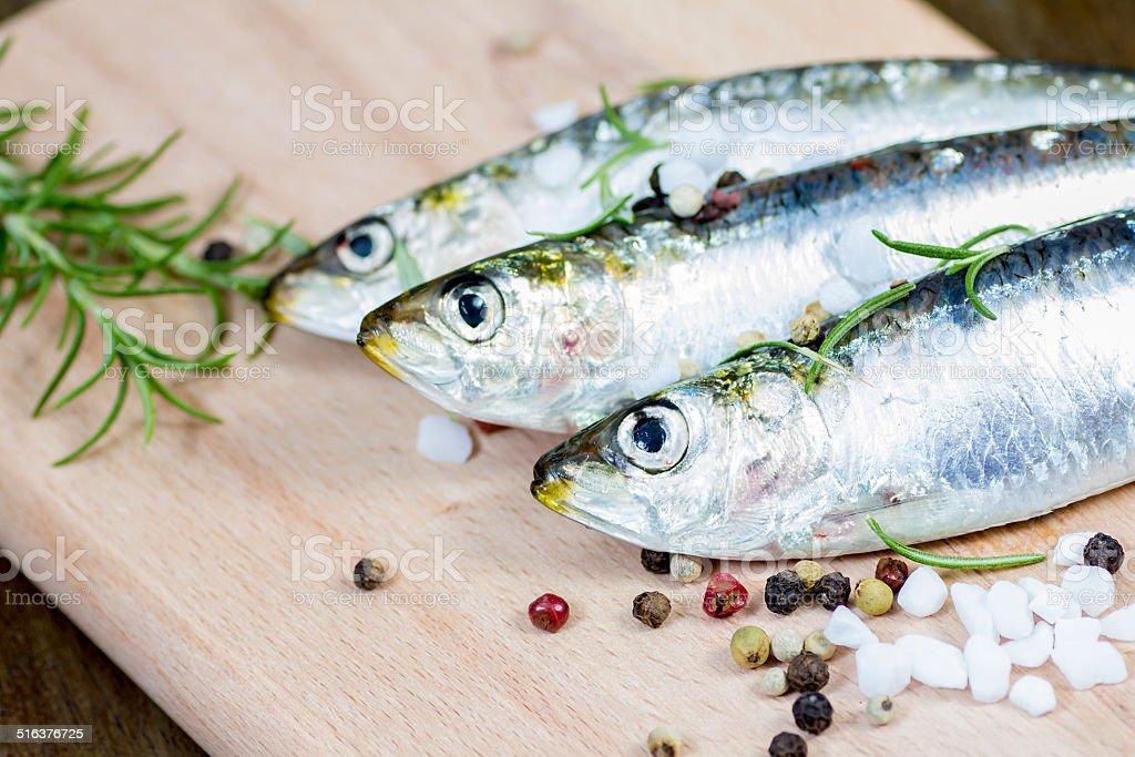 Raw sardine with spices stock photo