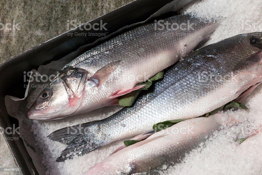 Raw Seabass stock photo